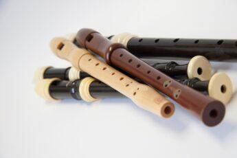 flûte à bec_345x230