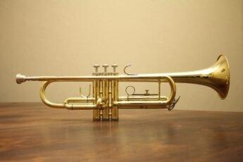 trompette_345x230