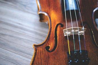 violon_345x230
