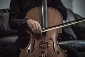 violoncelle_345x230