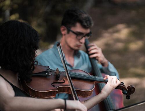Comment choisir entre le violon ou l'alto ?